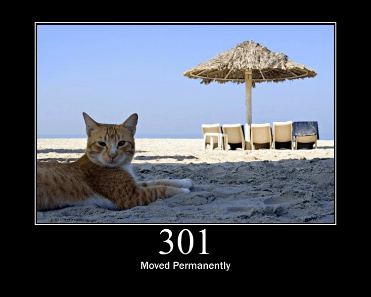 301 moved permamently